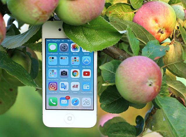 phone-1543530_640