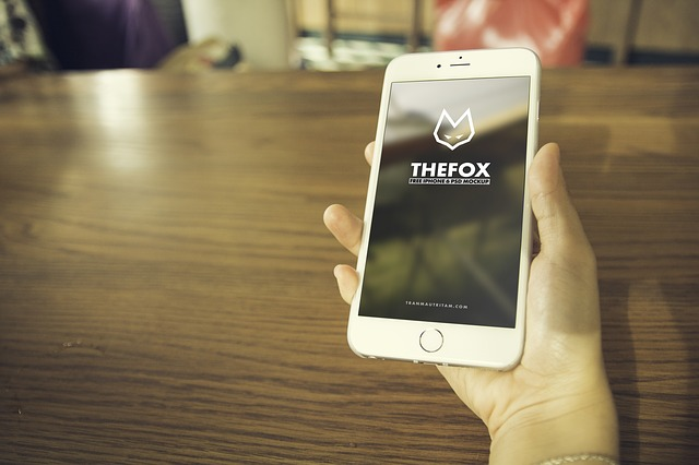 smart-phone-655106_640