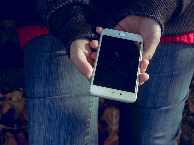 apple-1034299_640