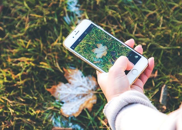 autumn-1031273_640